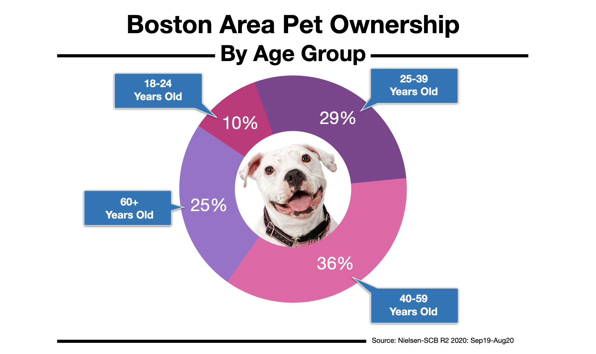 Advertising In Boston Pet Owners by Age